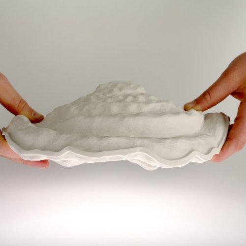 PŘÍRODNINA – Barbora Škoudlilová, porcelán, 35 x 20 x 12 cm, pod vedením MgA. Michaela Franče