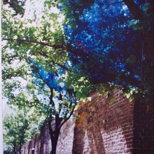 VITRAJ - MgA. Aleš Jírovec, malované ploché sklo, pohled do instalace ve staré královské oranžérie