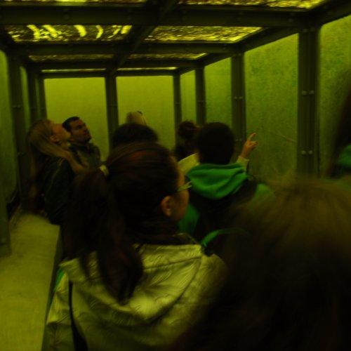 Třetí rybník jsme  nejprve prozkoumali ode dna. V podvodním tunelu se nám naskytl nevšední pohled do nitra rybníka, který dotvářelo velké množství běžně nepotkávaných živočichů - nezmarů, pulců žab, sláviček aj.