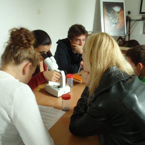 I druhá skupina začala s určováním.