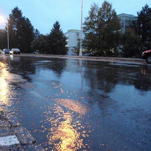 13.října začalo pršet a srážky trvaly další 3dny. Déšť možná nepotěšil motoristy, ale příroda vareálu školy iokolo něj si konečně přišla nasvé.