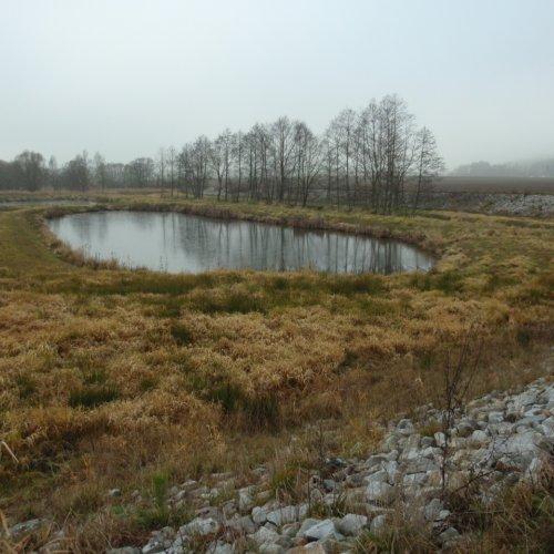 Nejprve jsme obhlédli suchý poldr u Kejžlice. Byl vybudován na přelomu let 2011 - 2012 nákladem přibližně 10 milionů korun. Na dané lokalitě vznikly 4 tůně, niva potoka prošla revitalizací, ...
