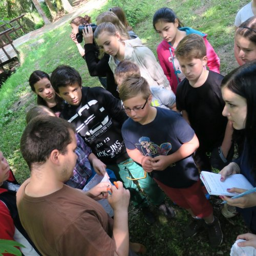 Skupina pozorně sleduje kroužkování sýkořat a poslouchá výklad pana Karafiáta o významu kroužkování ptáků.