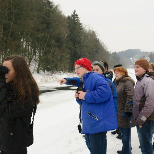 Velkým dobrodružstvím byla vycházka podél řeky Sázavy. Na této fotografii část žáků 7.a ze ZŠ Komenského spolu spaní učitelkou Janou Chladovou pozoruje dovádějící skorce.