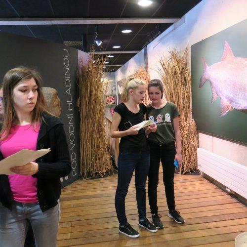 Ve vnitřních prostorách čekala na žáky spousta informací o životě kolem vody - pod hladinou i nad ní.