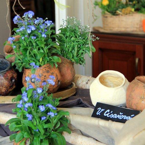 Skupina kulovitých květináčků (kamenina) – Vendula CÍSAŘOVÁ