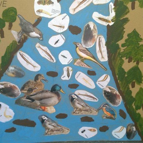 Tuto fotografii nám zaslala paní učitelka - takhle krásně si děti plakát domalovaly odpoledne ve školce. :-)