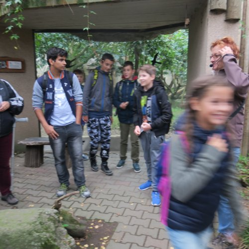 Žáci ZŠ právě prošli výukovým programem Biodiverzita, žáky II.V a I.G teprve čeká.