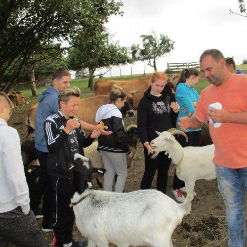 Mezi zvířaty na farmě v Zašovicích bylo moc fajn.