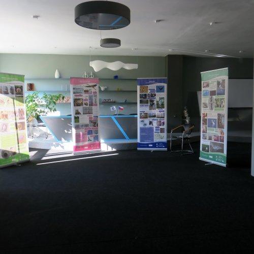 Výstava se 13. října na další dva týdny usídlila v aule Akademie.