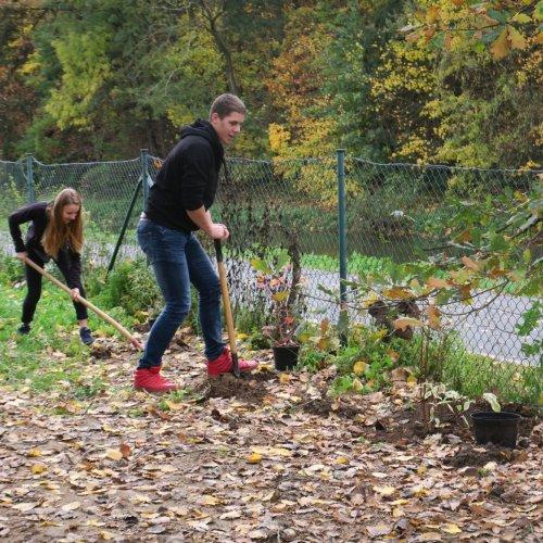 Ještě je třeba vysadit pestrý živý keřový plot a osítlouku.