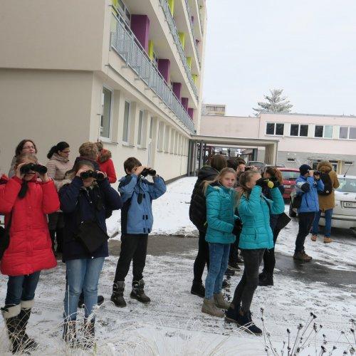 Žáci ze 7.C ZŠ Lánecká obhlížejí okolí našich krmítek. 19.12.2017