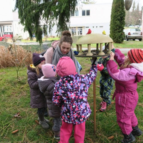 Děti zMŠ Sídliště obléhají naše školní krmítka. 24.1.2018