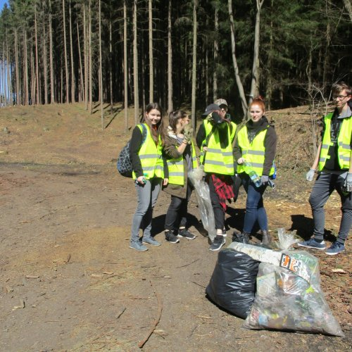 Žáci II.G vyrazili do lesa k Pavlíkovu - vyčistit silnici, kudy už možná nic nepojede.