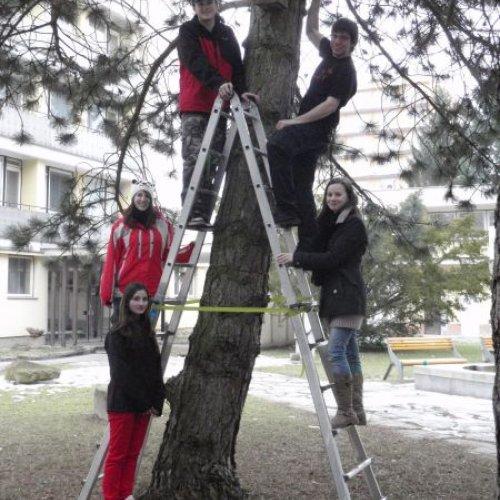 Než se zešeřilo visela celá čtveřice ptačích příbytků na stromech v areálu naší školy. Přejeme jim, aby brzy našly své opeřené obyvatele a pomohly ptačím rodičům v bezpečném odchovu jejich ratolestí.