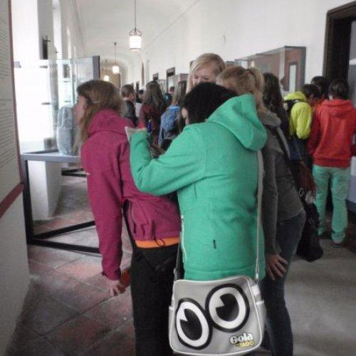 Studenti vypracovávali pracovní listy, a tak je bylo možné vidět v roztodivných pozicích s tužkou v ruce a pohledem přišpendleným k některé z vitrín.