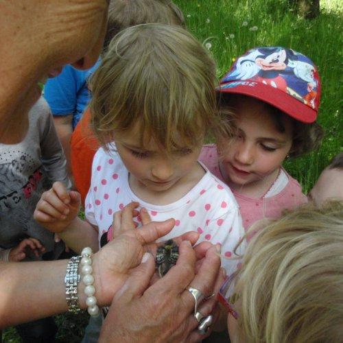 """Děti se seznamují s ptáčetem nejběžnějšího """"budkového"""" ptáka - sýkory koňadry."""
